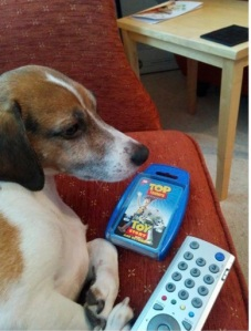 Photo of Claire's dog on a soft chair with TV remote control and Toy Story Top Trumps pack